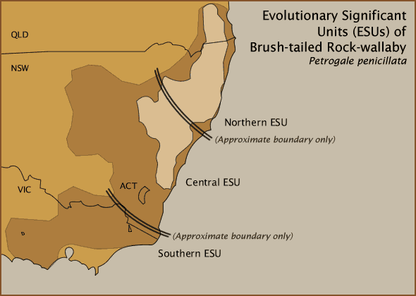 Evolutionary Significant Units (ESUs) of Brush-tailed Rock-wallaby